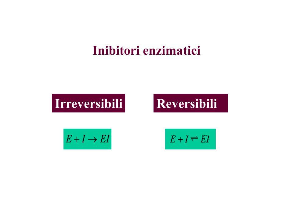 Inibitori enzimatici Irreversibili Reversibili
