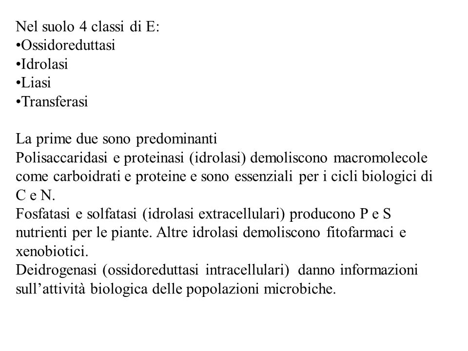 Nel suolo 4 classi di E: Ossidoreduttasi. Idrolasi. Liasi. Transferasi. La prime due sono predominanti.