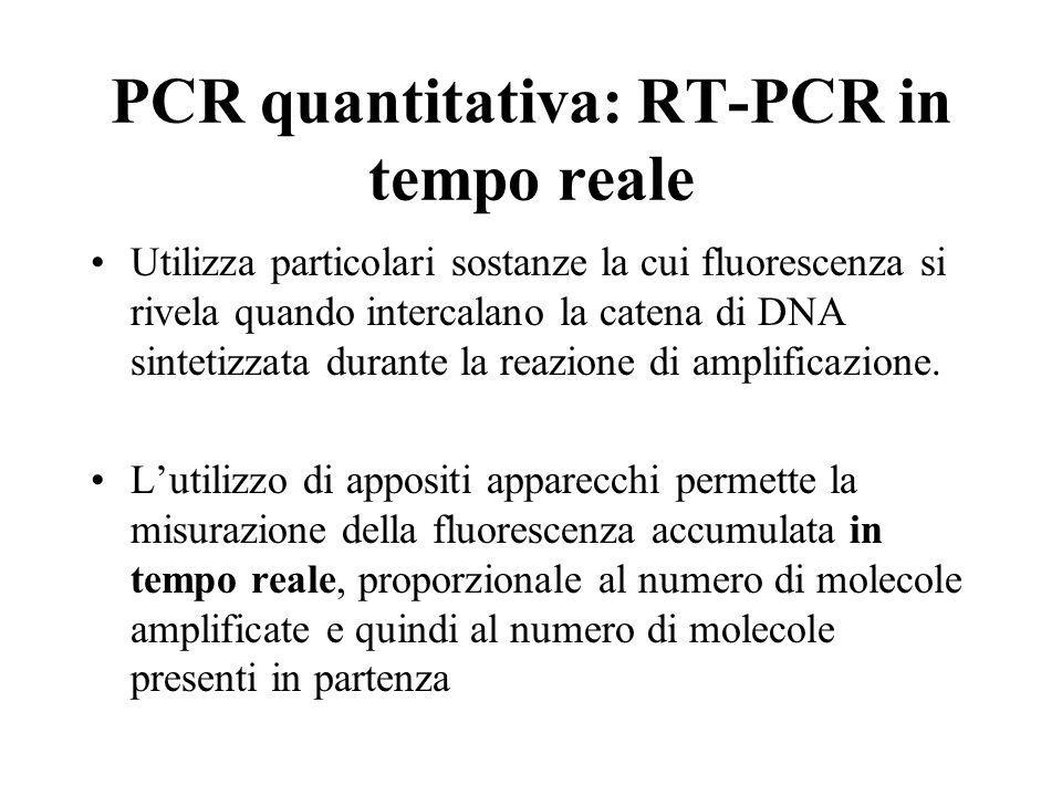 PCR quantitativa: RT-PCR in tempo reale