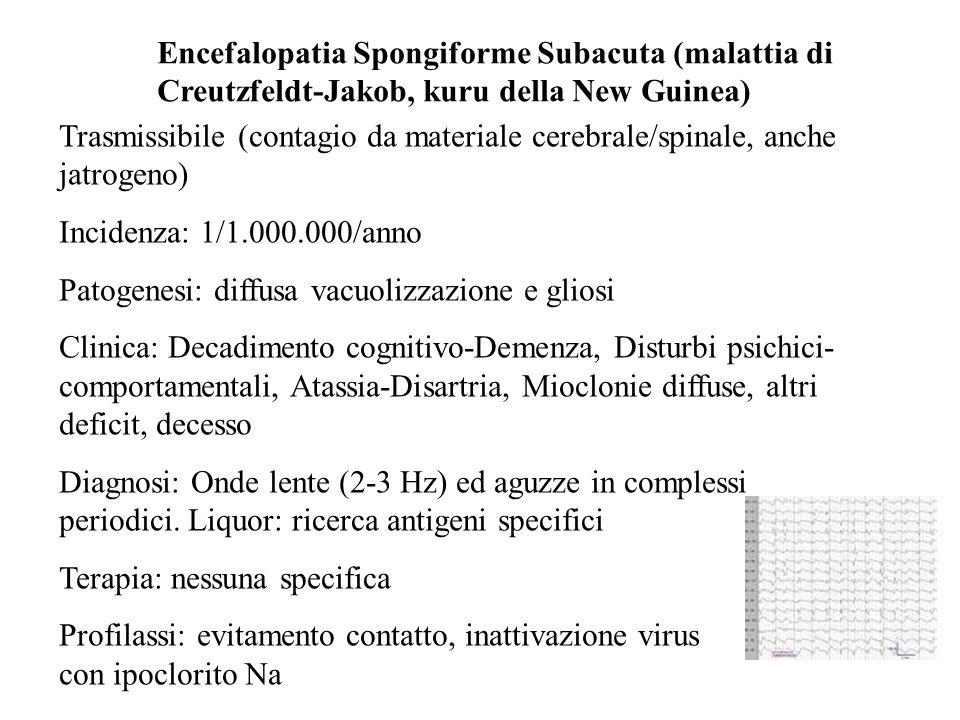 Encefalopatia Spongiforme Subacuta (malattia di Creutzfeldt-Jakob, kuru della New Guinea)