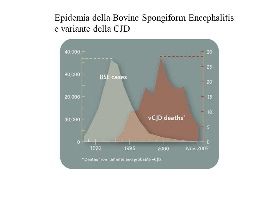 Epidemia della Bovine Spongiform Encephalitis e variante della CJD