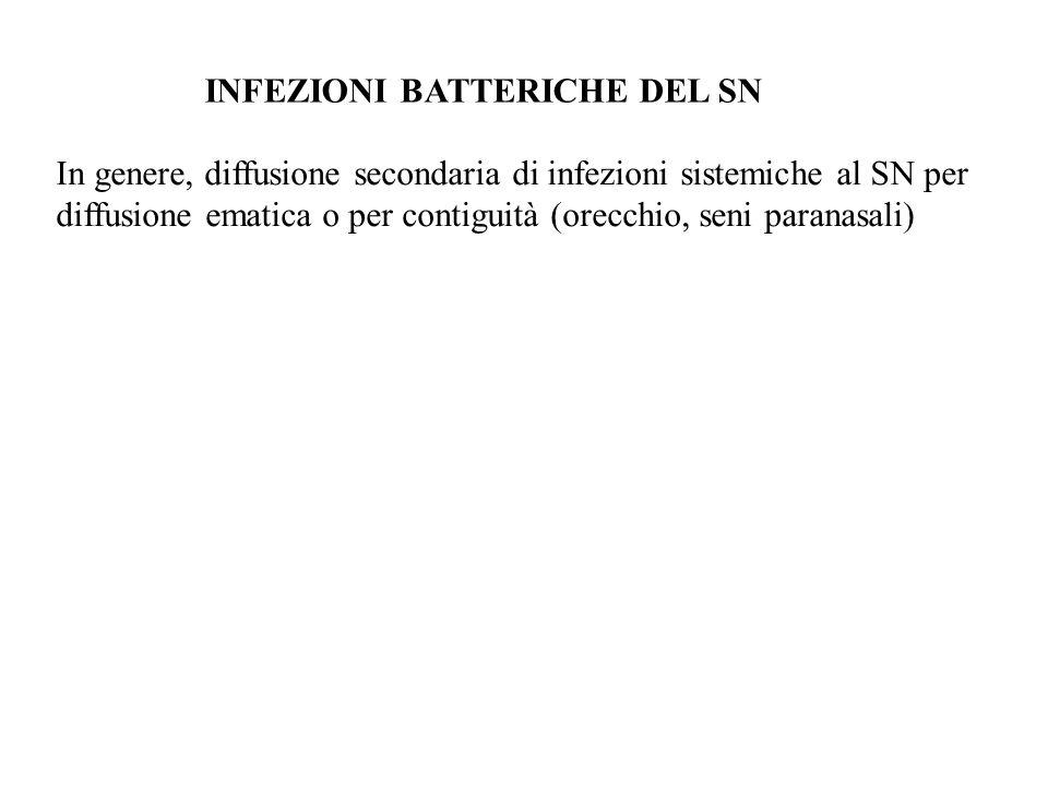 INFEZIONI BATTERICHE DEL SN