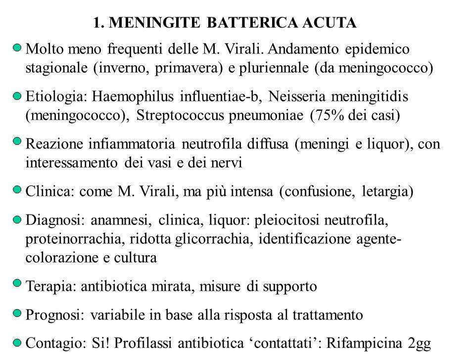 1. MENINGITE BATTERICA ACUTA