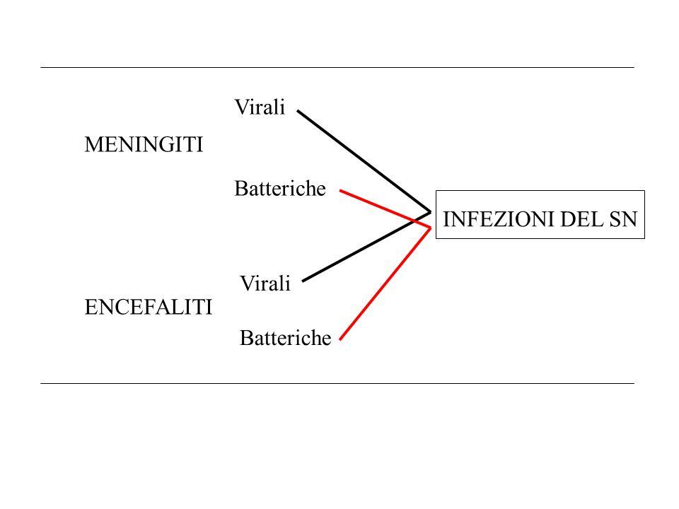Virali Batteriche MENINGITI ENCEFALITI INFEZIONI DEL SN Virali Batteriche