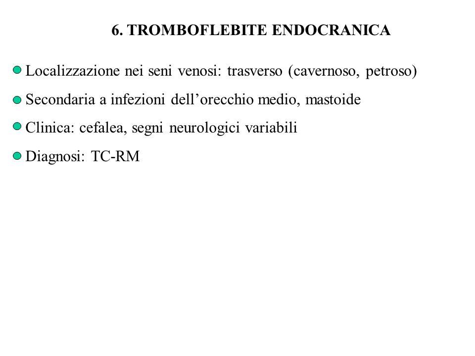 6. TROMBOFLEBITE ENDOCRANICA