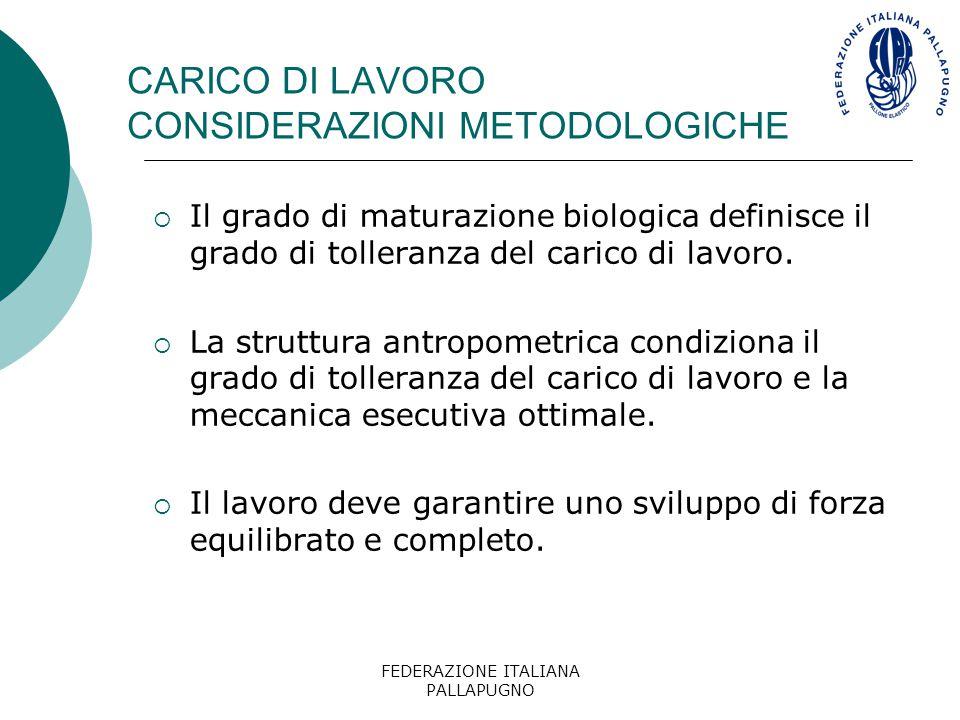 CARICO DI LAVORO CONSIDERAZIONI METODOLOGICHE