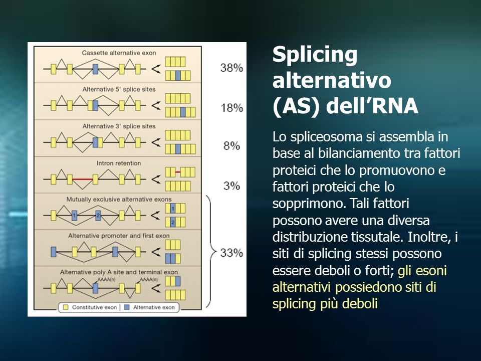 Splicing alternativo (AS) dell'RNA