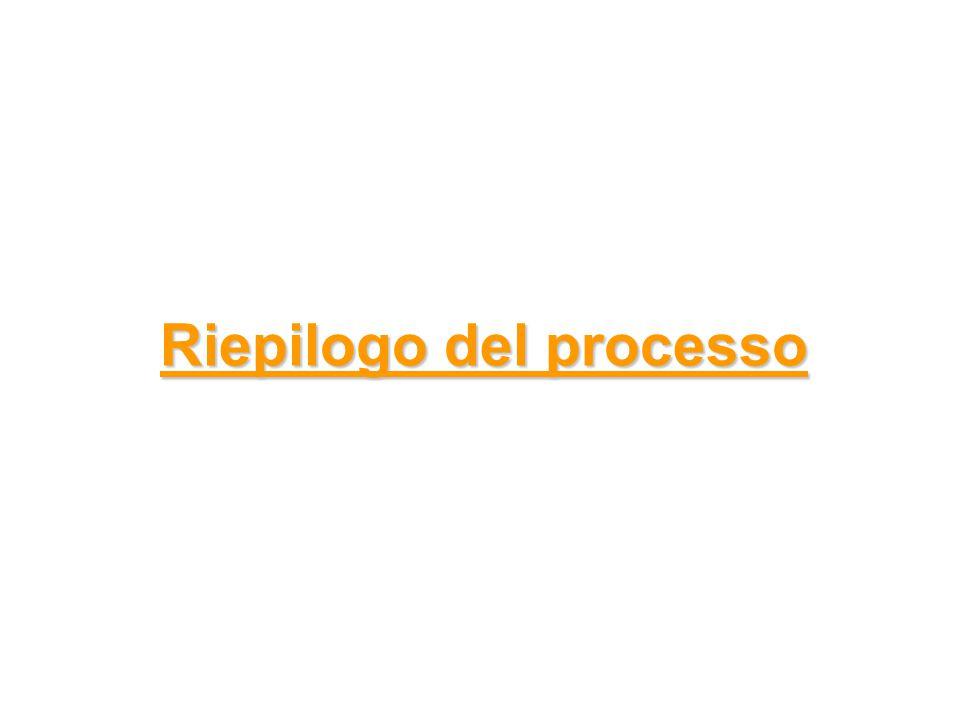 Riepilogo del processo