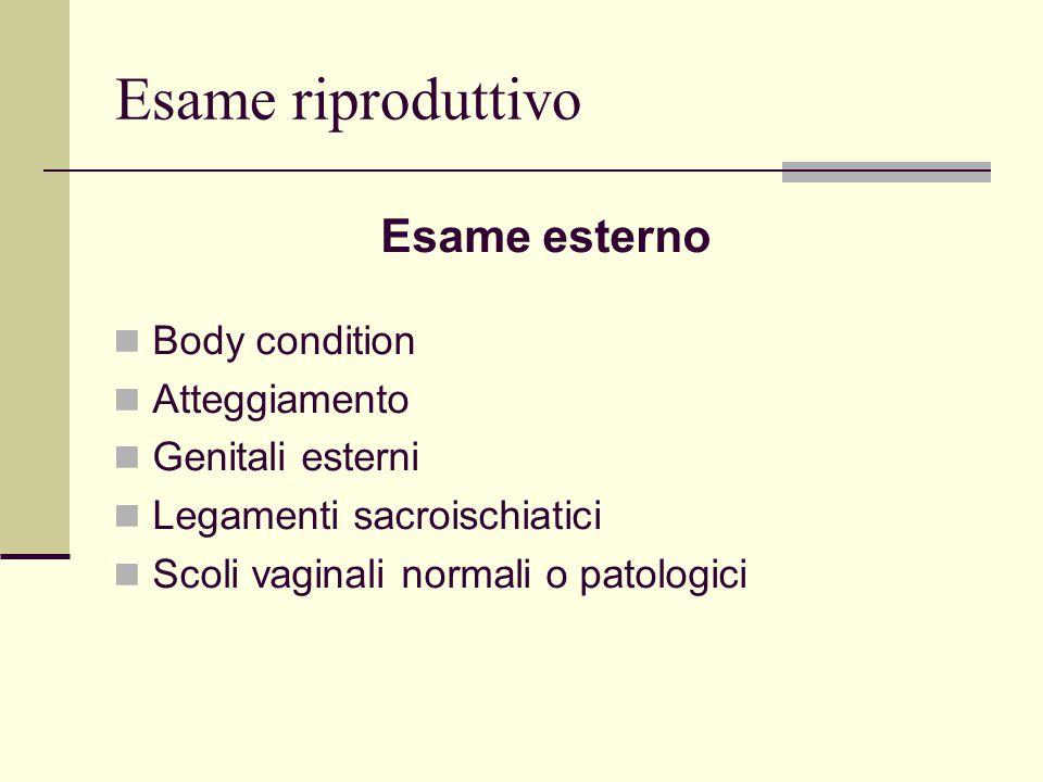 Esame riproduttivo Esame esterno Body condition Atteggiamento
