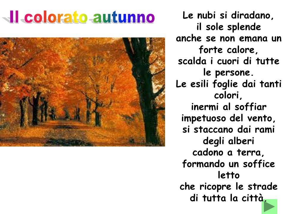Il colorato autunno Le nubi si diradano, il sole splende
