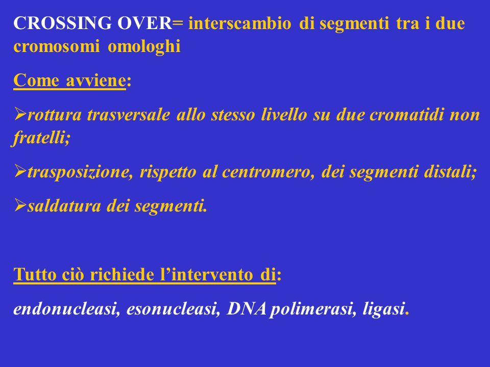CROSSING OVER= interscambio di segmenti tra i due cromosomi omologhi