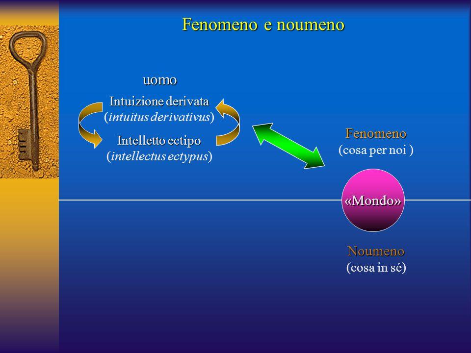 Fenomeno e noumeno uomo Fenomeno «Mondo» Noumeno Intuizione derivata