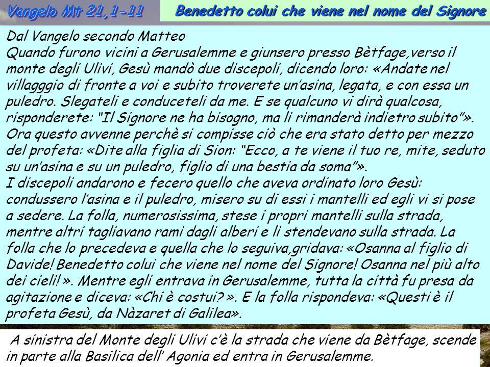 Vangelo Mt 21,1-11 Benedetto colui che viene nel nome del Signore. Dal Vangelo secondo Matteo.