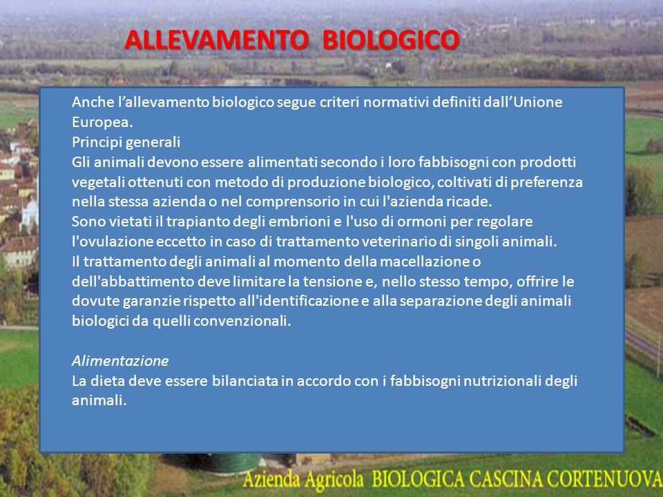 ALLEVAMENTO BIOLOGICO