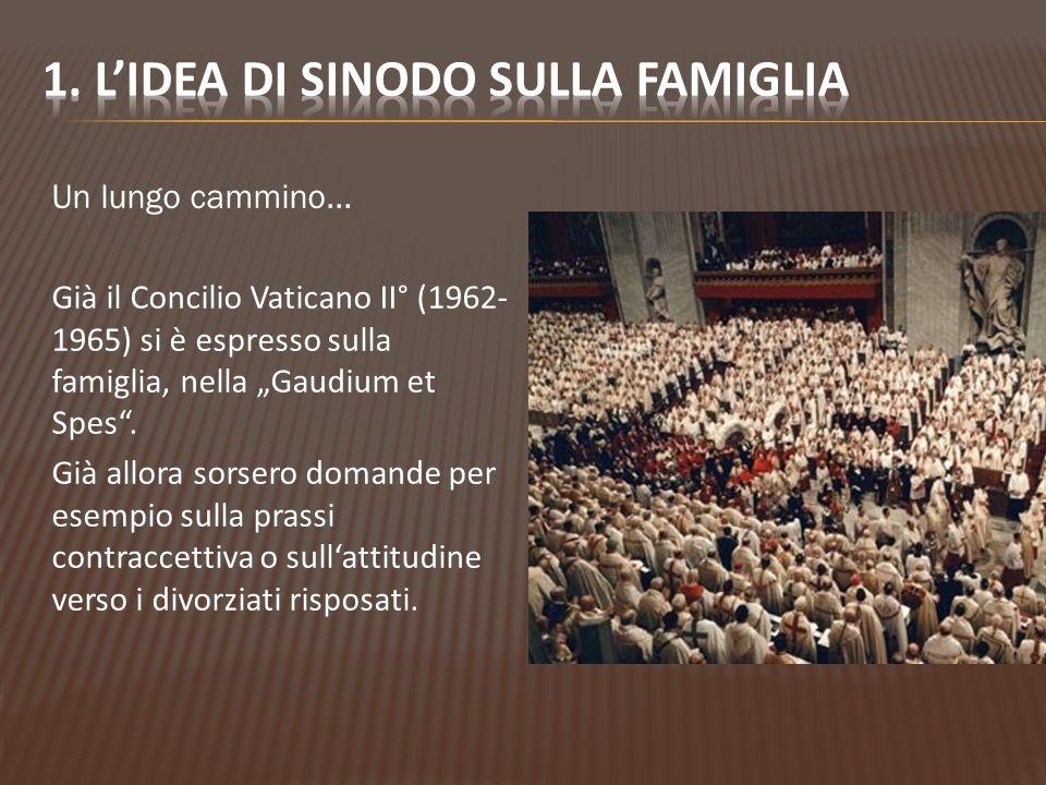 1. L'idea di Sinodo sulla famiglia