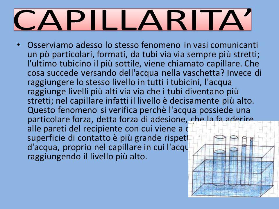 CAPILLARITA'