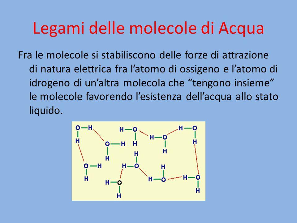 Legami delle molecole di Acqua