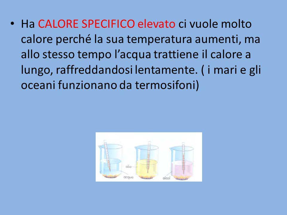 Ha CALORE SPECIFICO elevato ci vuole molto calore perché la sua temperatura aumenti, ma allo stesso tempo l'acqua trattiene il calore a lungo, raffreddandosi lentamente.