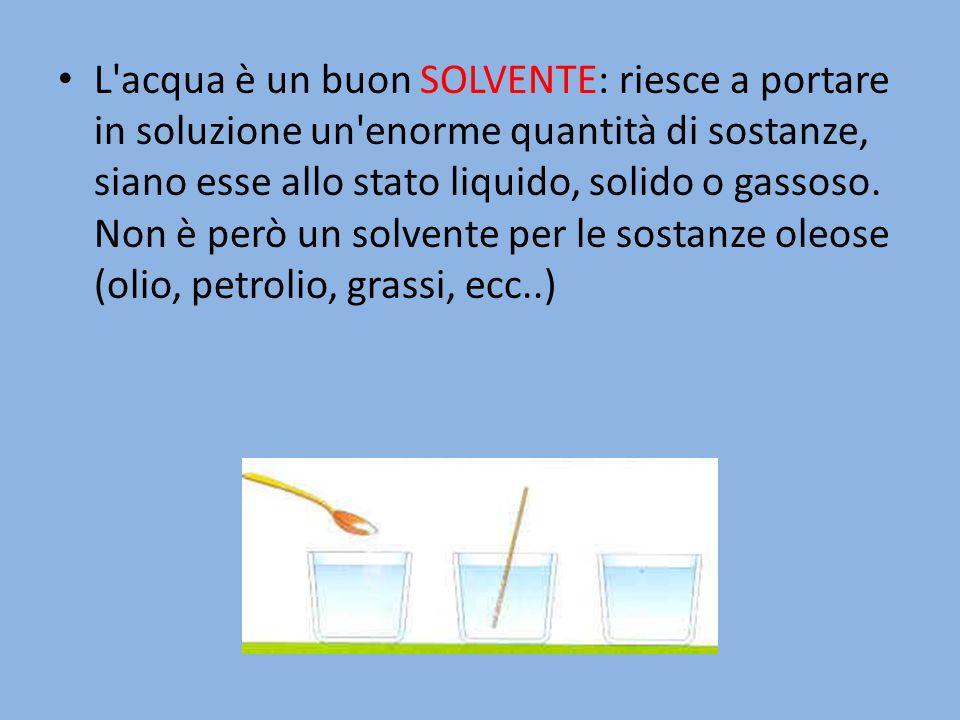 L acqua è un buon SOLVENTE: riesce a portare in soluzione un enorme quantità di sostanze, siano esse allo stato liquido, solido o gassoso.