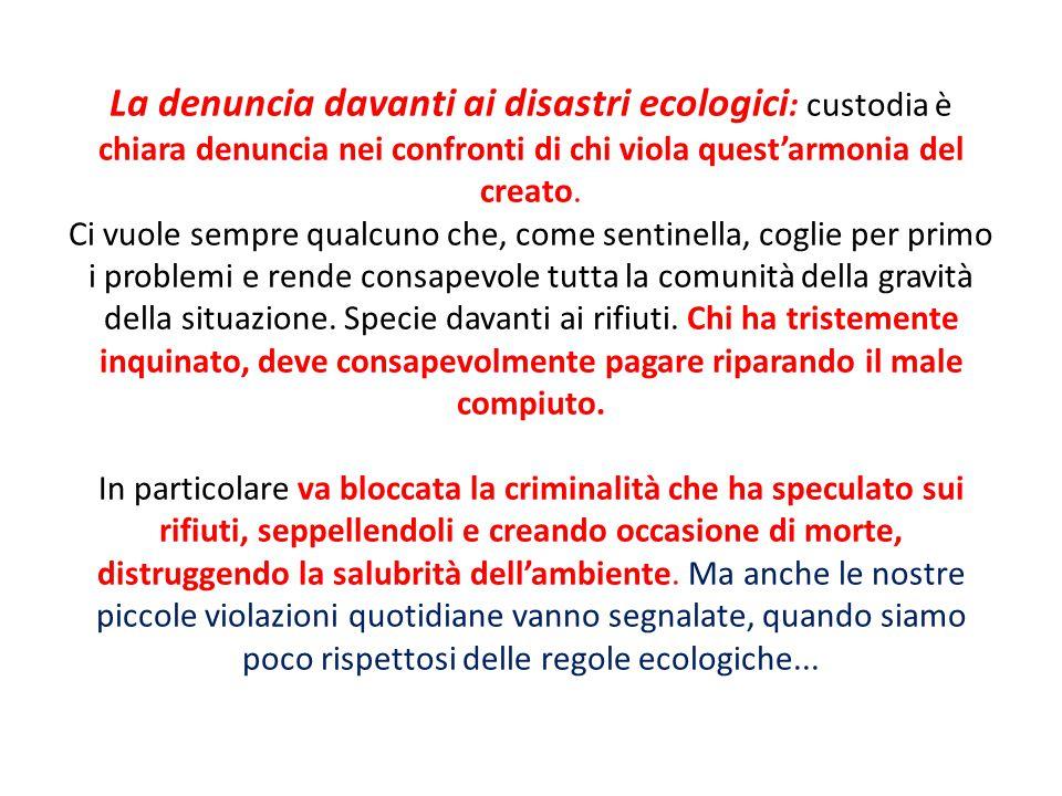 La denuncia davanti ai disastri ecologici: custodia è chiara denuncia nei confronti di chi viola quest'armonia del creato.