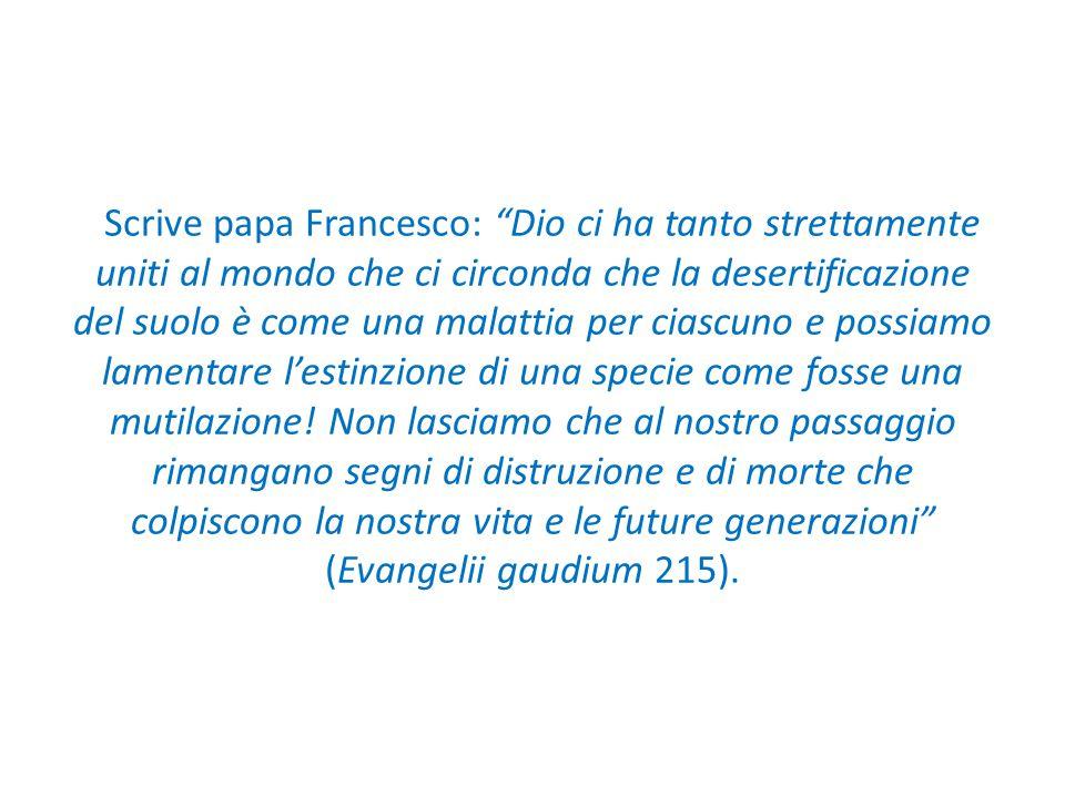 Scrive papa Francesco: Dio ci ha tanto strettamente uniti al mondo che ci circonda che la desertificazione del suolo è come una malattia per ciascuno e possiamo lamentare l'estinzione di una specie come fosse una mutilazione.