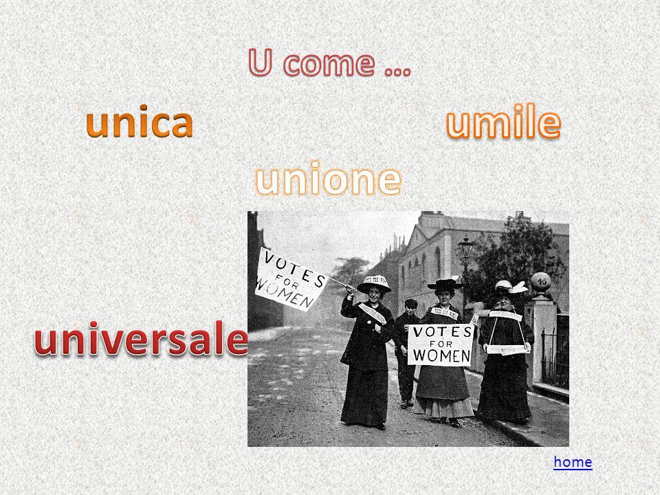 unica umile unione universale