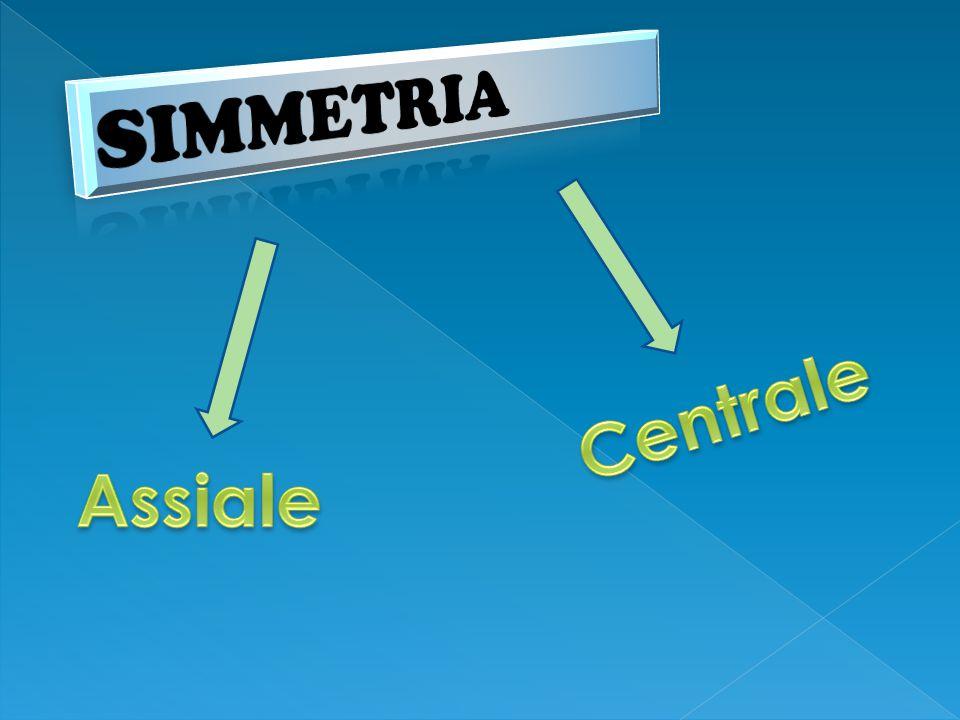SIMMETRIA Centrale Assiale