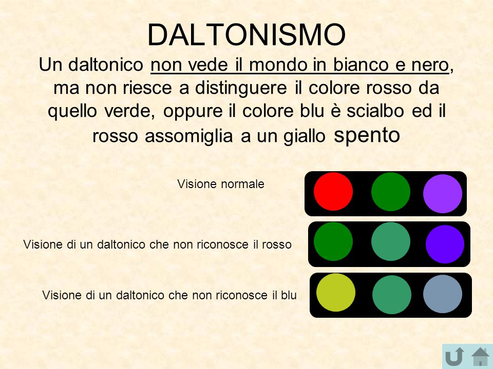 DALTONISMO Un daltonico non vede il mondo in bianco e nero, ma non riesce a distinguere il colore rosso da quello verde, oppure il colore blu è scialbo ed il rosso assomiglia a un giallo spento