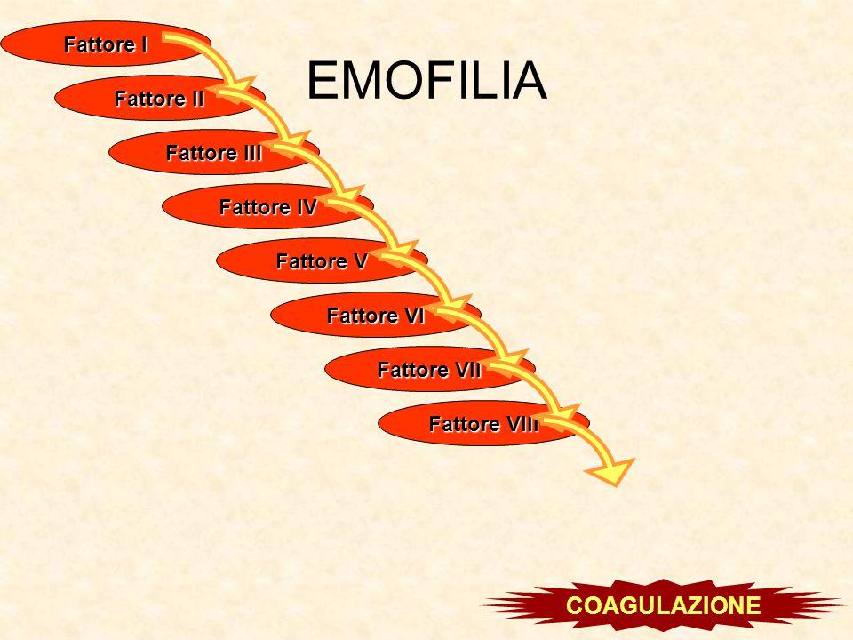 EMOFILIA COAGULAZIONE Fattore I Fattore II Fattore III Fattore IV