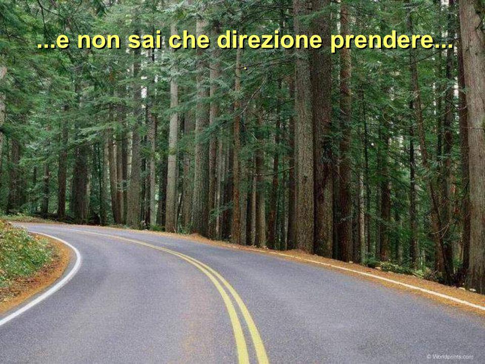 ...e non sai che direzione prendere...