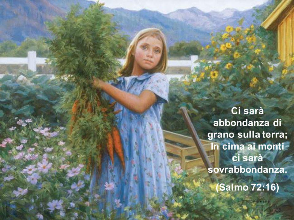 Ci sarà abbondanza di grano sulla terra; In cima ai monti ci sarà sovrabbondanza.