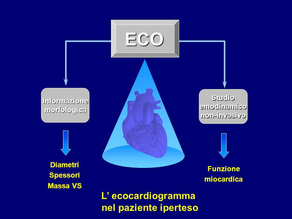 ECO L' ecocardiogramma nel paziente iperteso Studio Informazione