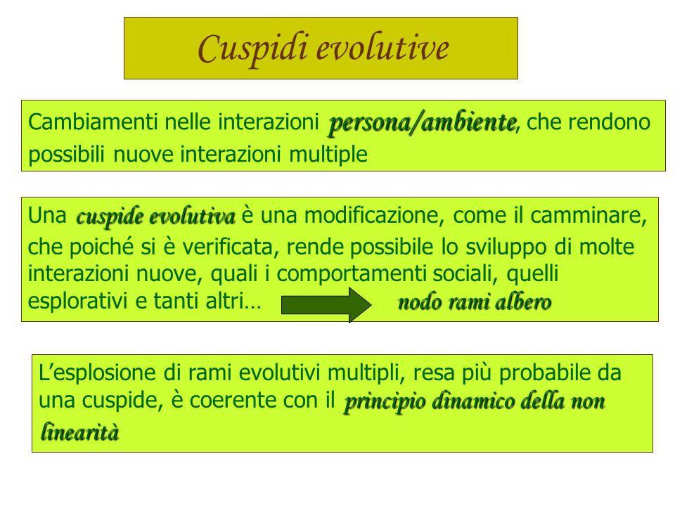 Cuspidi evolutive Cambiamenti nelle interazioni persona/ambiente, che rendono. possibili nuove interazioni multiple.