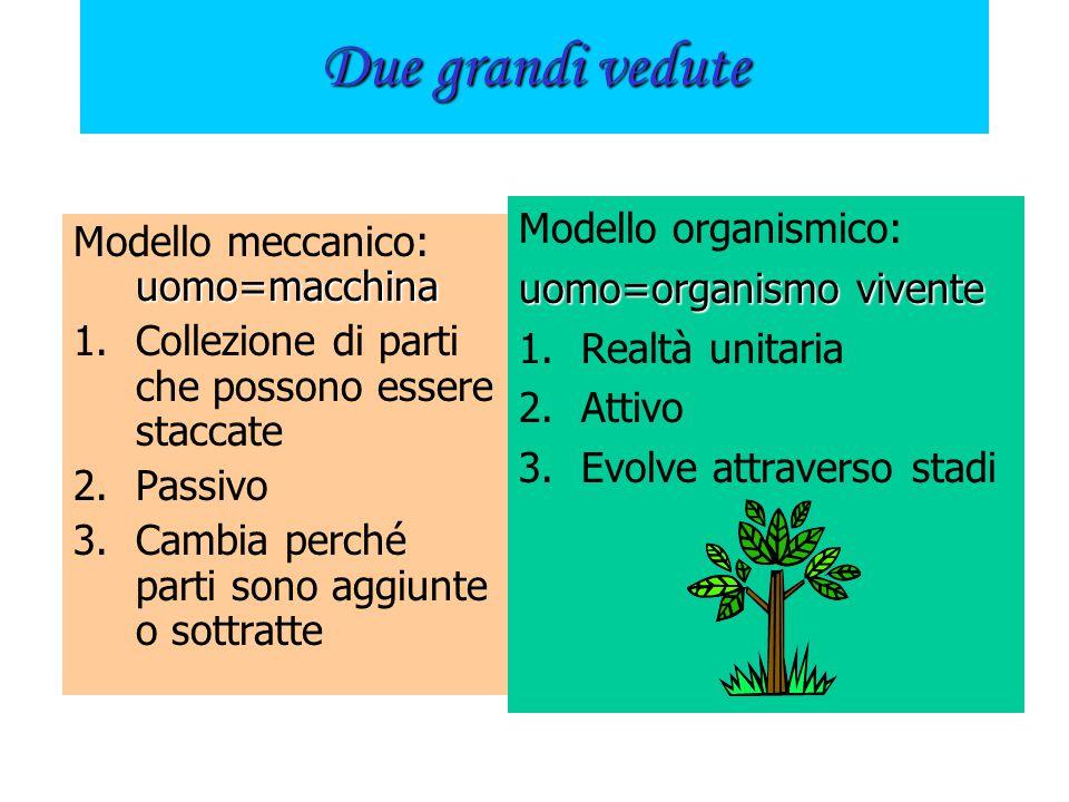 Due grandi vedute Modello organismico: