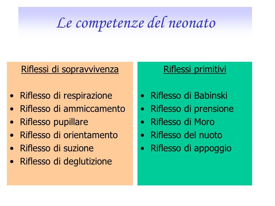 Le competenze del neonato