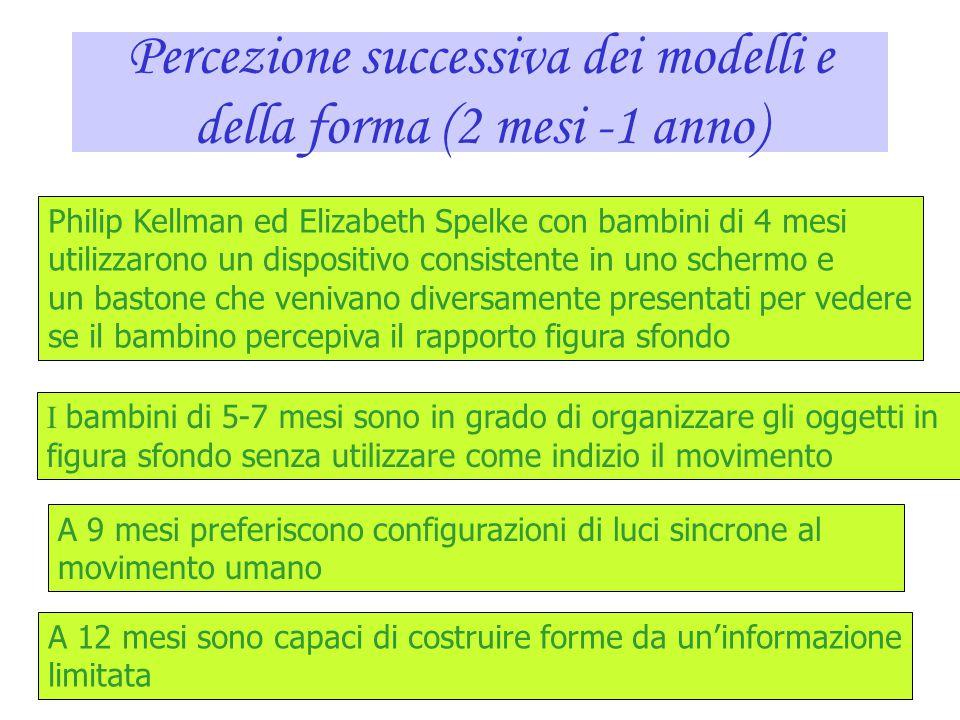 Percezione successiva dei modelli e della forma (2 mesi -1 anno)