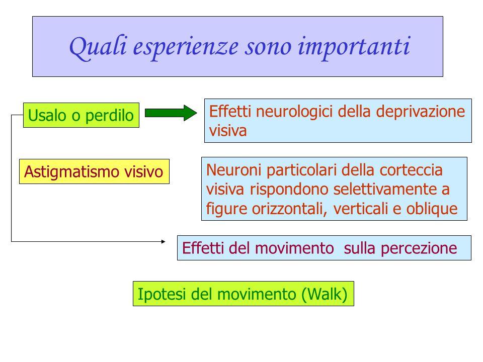 Quali esperienze sono importanti