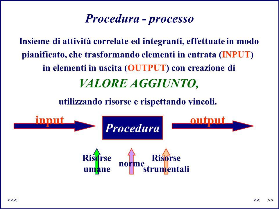 Procedura - processo VALORE AGGIUNTO, Procedura input output
