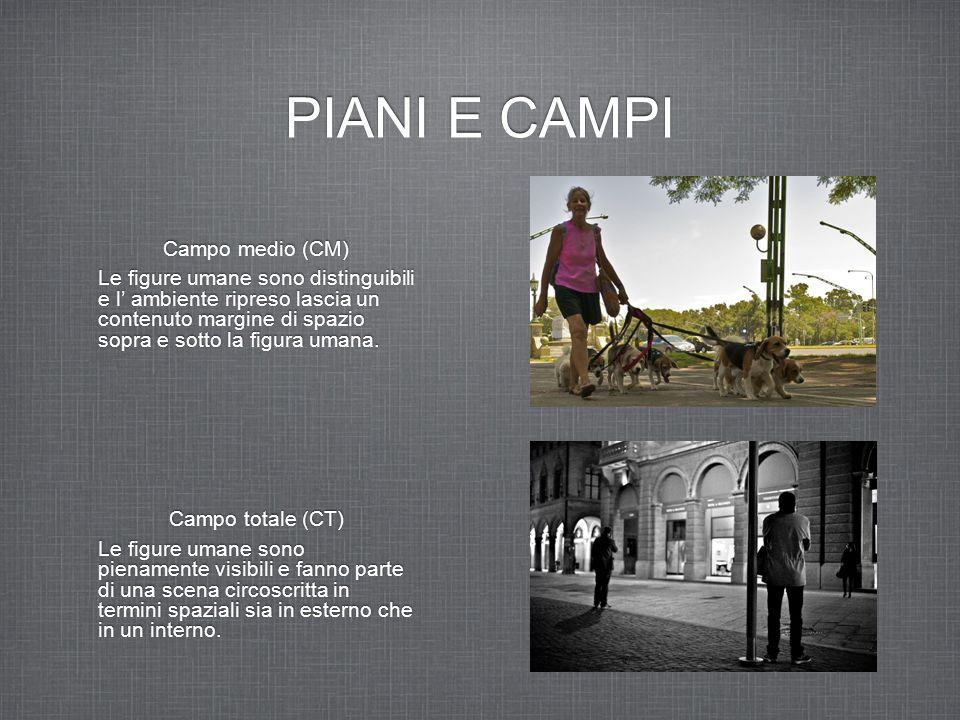 PIANI E CAMPI Campo medio (CM)