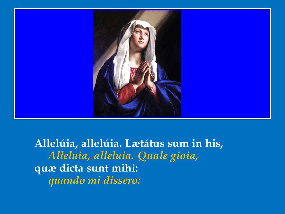 Allelúia, allelúia. Lætátus sum in his, Alleluia, alleluia