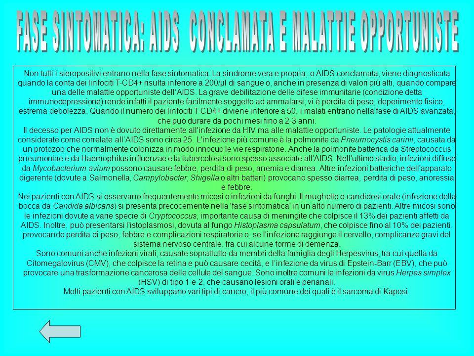 FASE SINTOMATICA: AIDS CONCLAMATA E MALATTIE OPPORTUNISTE