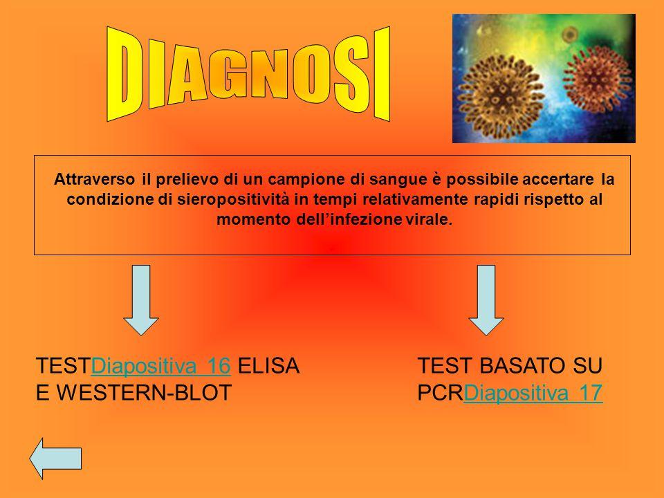 DIAGNOSI TESTDiapositiva 16 ELISA E WESTERN-BLOT