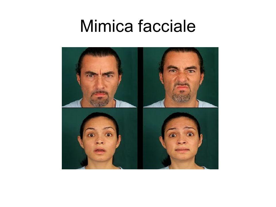 Mimica facciale