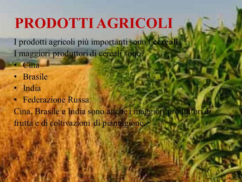 PRODOTTI AGRICOLI I prodotti agricoli più importanti sono i cereali.