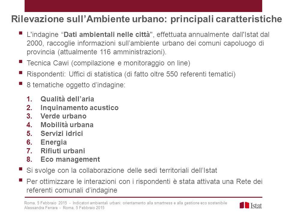 Rilevazione sull'Ambiente urbano: principali caratteristiche