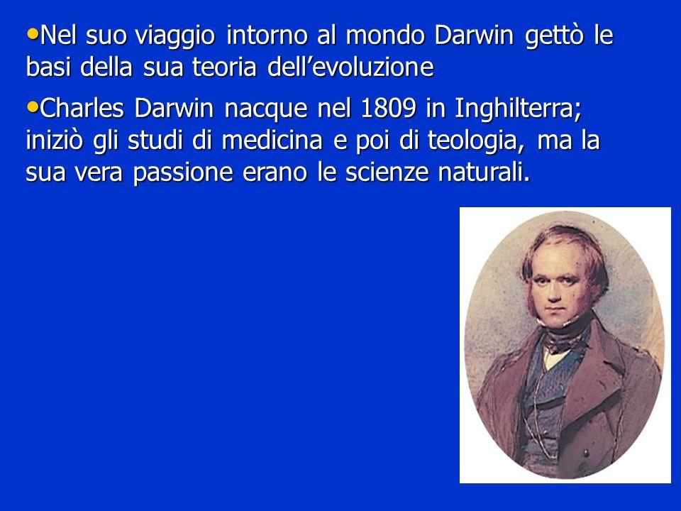 Nel suo viaggio intorno al mondo Darwin gettò le basi della sua teoria dell'evoluzione