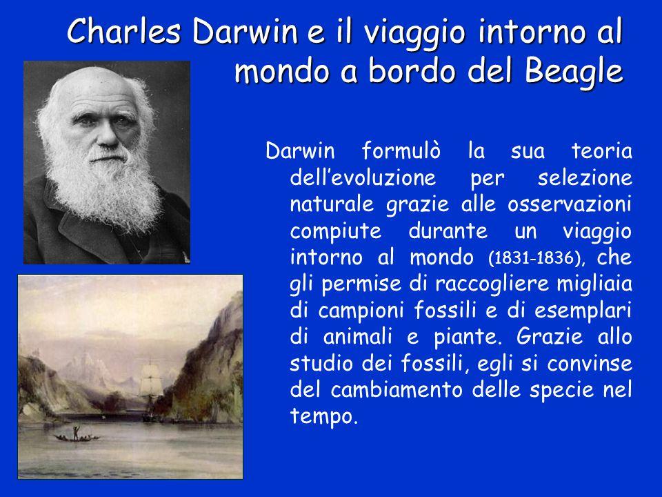 Charles Darwin e il viaggio intorno al mondo a bordo del Beagle