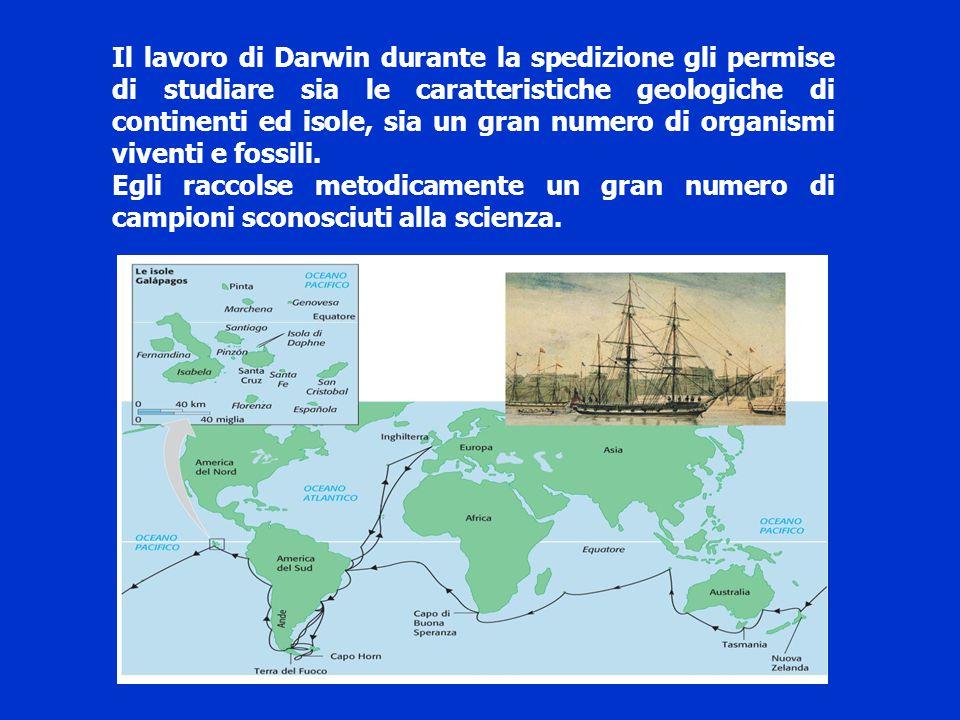 Il lavoro di Darwin durante la spedizione gli permise di studiare sia le caratteristiche geologiche di continenti ed isole, sia un gran numero di organismi viventi e fossili.