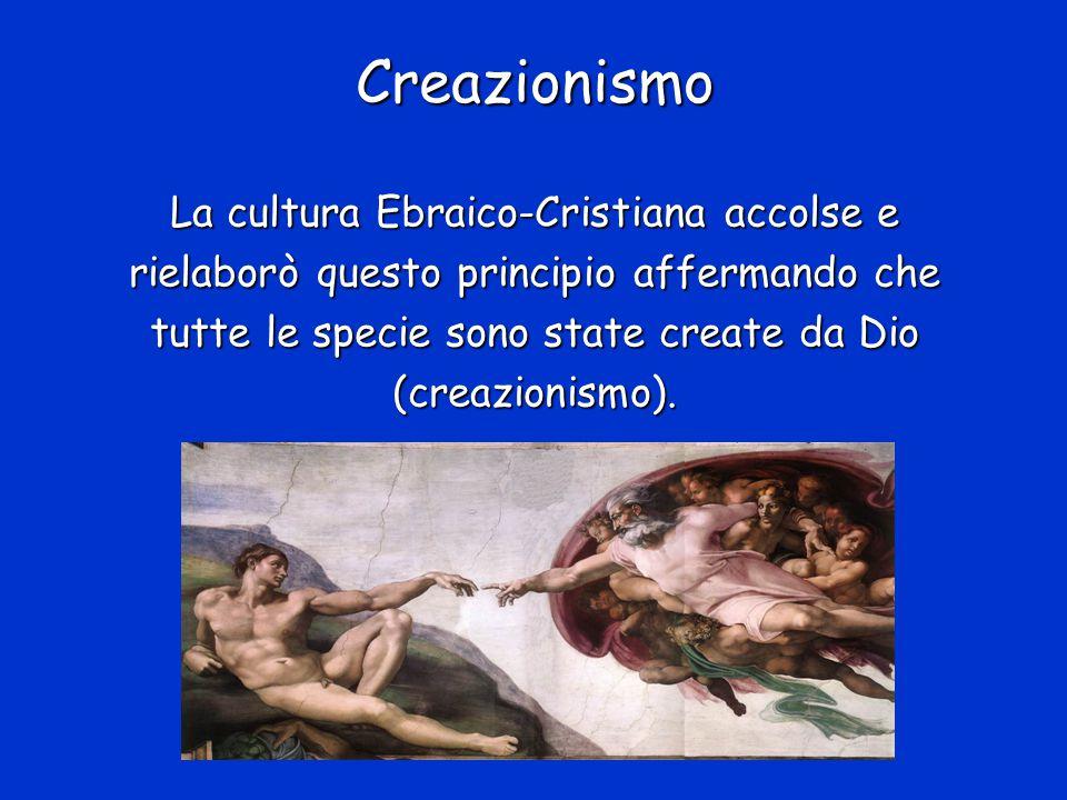 Creazionismo La cultura Ebraico-Cristiana accolse e