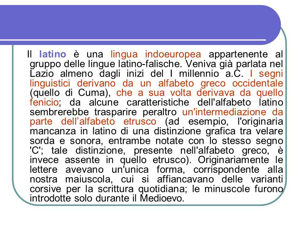 Il latino è una lingua indoeuropea appartenente al gruppo delle lingue latino-falische.